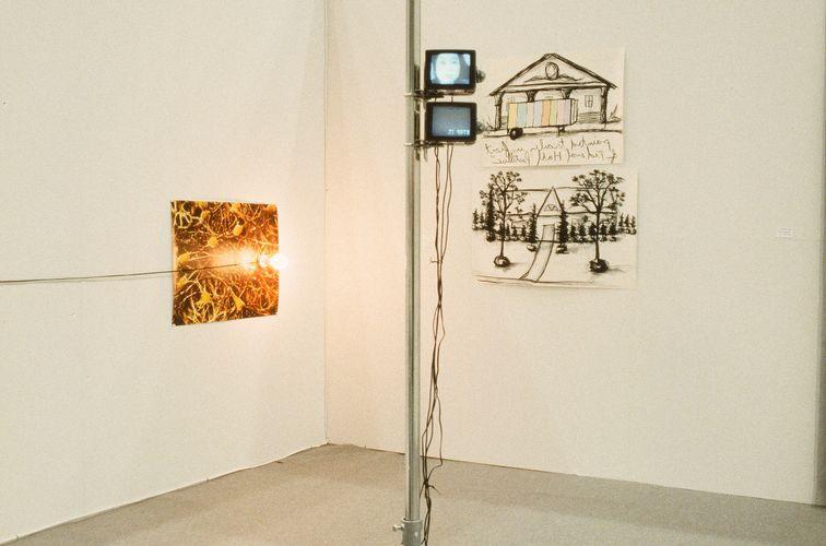 Works by Véronique Joumard and Ericson & Mel Ziegler