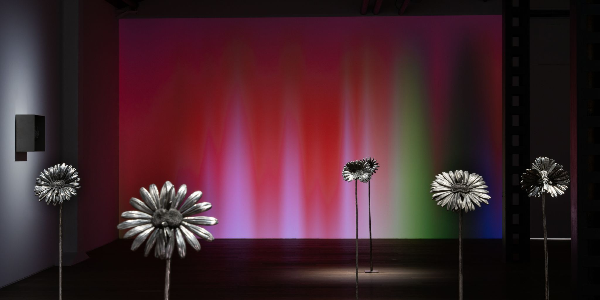 """View of the exhibition """"Laurent Grasso: Future Herbarium"""" at Perrotin Shanghai, 2020. Photo: Mengqi Bao Courtesy of the artist and Perrotin"""