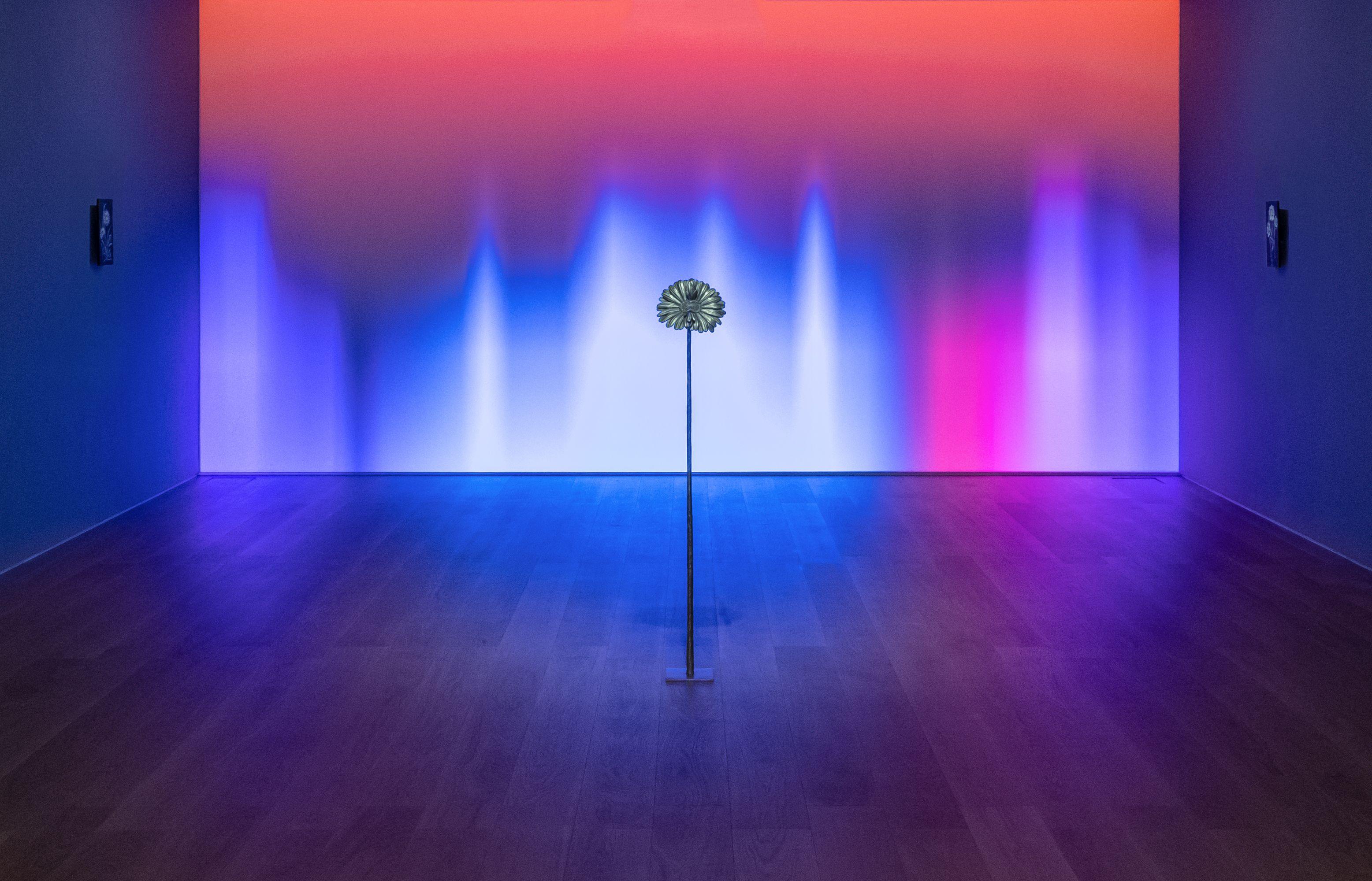 View of solo exhibition 'Future Herbarium' at Perrotin Hong Kong, 2021. Photo: Ringo Cheung. © Laurent Grasso / ADAGP, Paris & SACK, Seoul 2021. Courtesy Perrotin