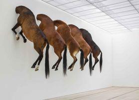 "Vue de l'exposition ""Kaputt"" à Foundation Beyeler  Riehen / Basel (Switzerland), 2013 | Maurizio CATTELAN"