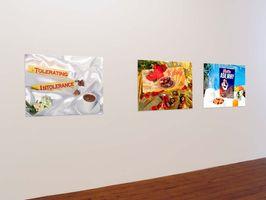 "View of the exhibition ""Operation Supermarket"" at The Counter Gallery  (with Shirin Aliabadi), 2006 | Farhad MOSHIRI"
